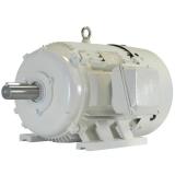 Oil Well Pump Motors