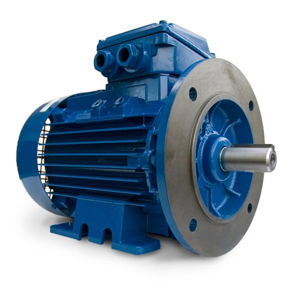 40 Hp 1800 Rpm Iec Frame Metric Motor 200l D Flange 20mdm 3 40 18 Webco Industrial